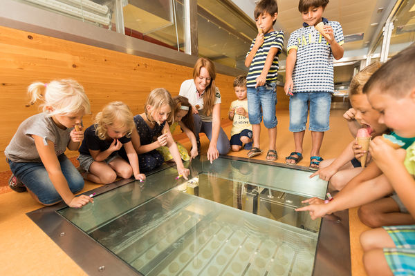 Enjoy the Haubis pre-school and school programme with Anton Kornmeister.